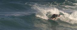 Shipwrecks 6-7-2013